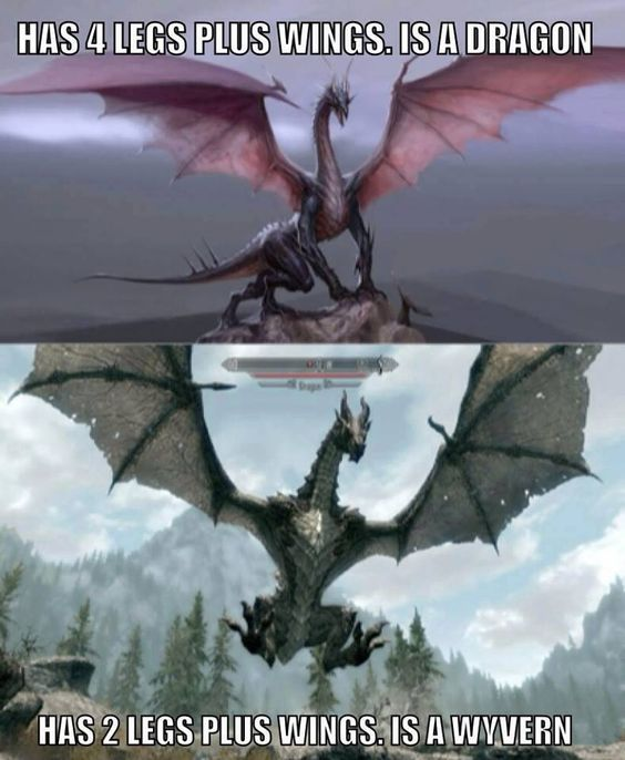 Dragons vs wyverns   Draconic imagery   Pinterest   Skyrim ...