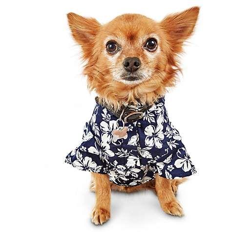 Bond & Co Navy Hawaiian Hibiscus Dog Shirt   Petco   Dog shirt ...
