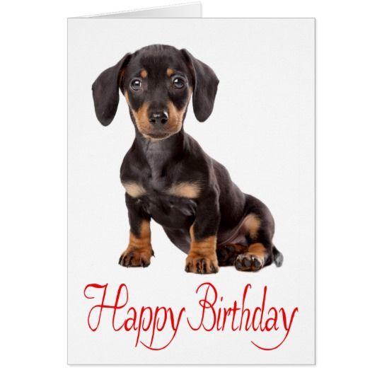 Happy Birthday Dachshund Puppy Dog Card Zazzle Co Uk Happy