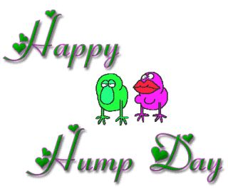Happy Hump Day Cartoons | Good Day Happy Hump Day | Gif ...