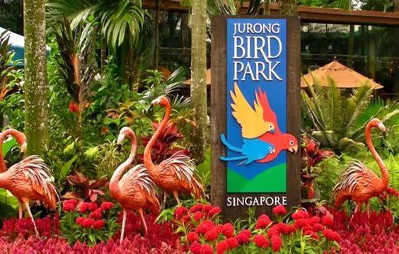 Nơi cư trú của hơn 9.000 cá thể chim thuộc hơn 600 loài khác nhau.