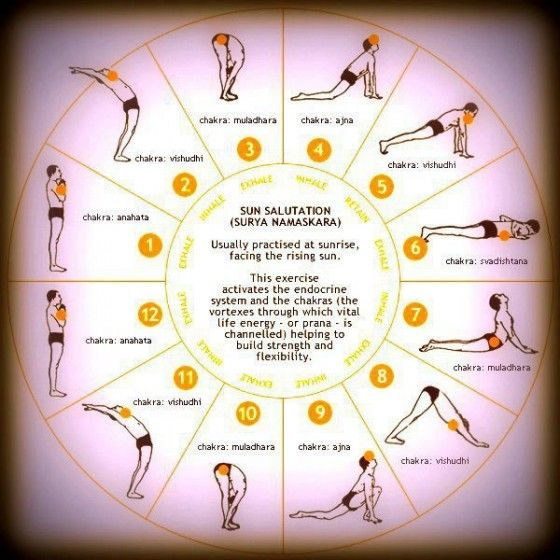 Surya Namaskar The Sacred Salutation In Yoga Morning Yoga Surya Namaskar Surya Namaskara