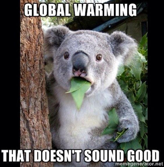 Global warming? ...yikes!?