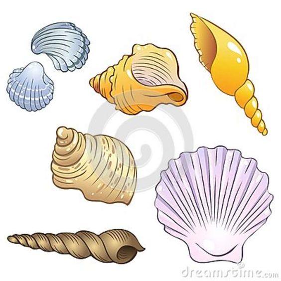 Cartoon Sea Shells | Set of illustrations in a cartoon ...