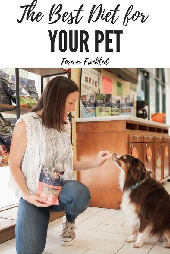 Pet Parents Are Increasingly Aware Of The Impact Nutrition Has On