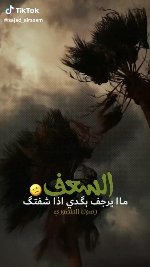 Mohammed 1 Alaleaoi 1 Instagram Photos And Videos Adventure Travel Nightlife Travel Instagram Photo