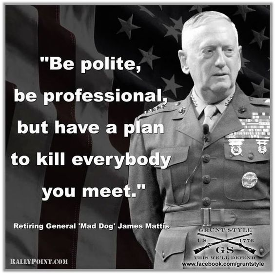 Image result for general mad dog mattis