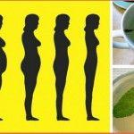 O chá desta planta pode fazer você emagrecer até 1,5kg por semana