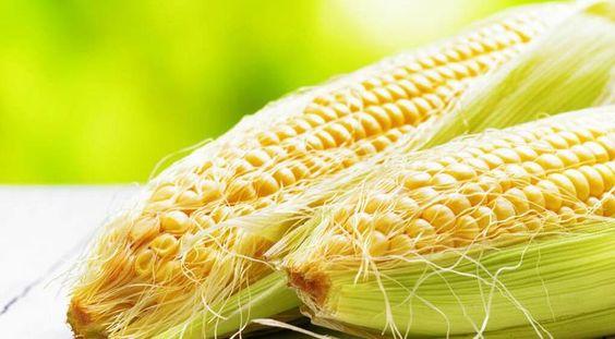 Рыльца кукурузы: для чего они нужны 37326d77f0115499740eb175bfa8d3b5