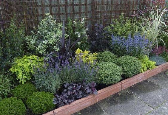entretien de jardin facile avec plantes vivaces persistantes