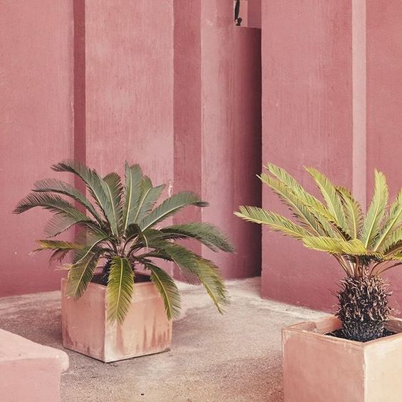 WEBSTA @ thewildplace - -- Ricardo Bofill's home, La Muralla Roja, Alicante, Spain, photographedby Nacho Alegre......
