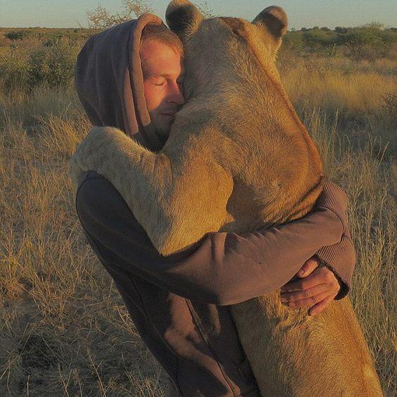 Until One has loved an Animal a part of One's soul remains unawakened. / / / #LionsAndLionesses #Lions #LandL #Lionesses #LionLife #Léon #Leo #LionHeart #LA #Lev www.LionsAndLionesses.com