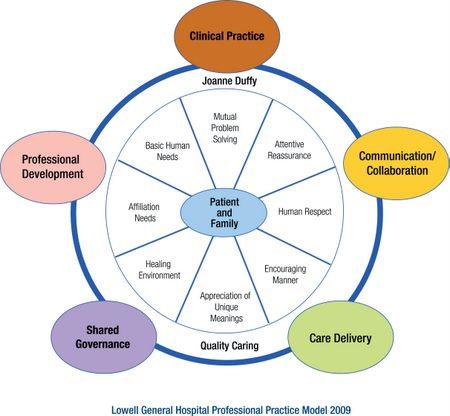 quality care model by joann duffy Joanne duffy quality care model conclusion the qcm supports the association between professional nursing and quality health outcomes health is unique to the individual.