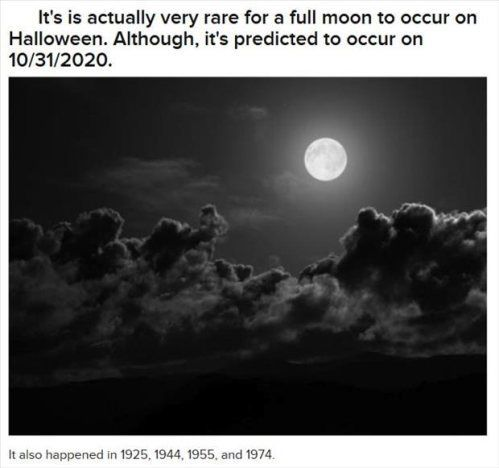 Spooky Facts About Halloween 2020 22 Spooky Halloween Facts for the Day After | Halloween facts, Fun