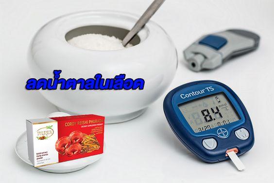 ถั่งเช่ากับโรคเบาหวาน ช่วยอะไรได้บ้าง?