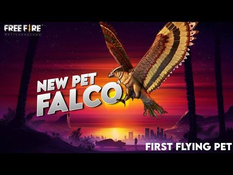 New Upcoming Pet In Free Fire First Flying Pet In Free Fire Youtube In 2020 Pets Pet News Fire