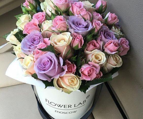 صور متحركه ورد أجمل صور مميزة عن ورود مريحة للعين Luxury Flowers Beautiful Flower Arrangements Flowers