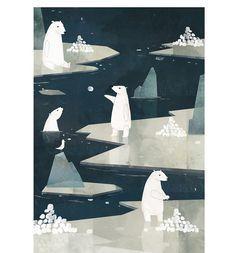 florian pige polar bear seagull ice arctic sea