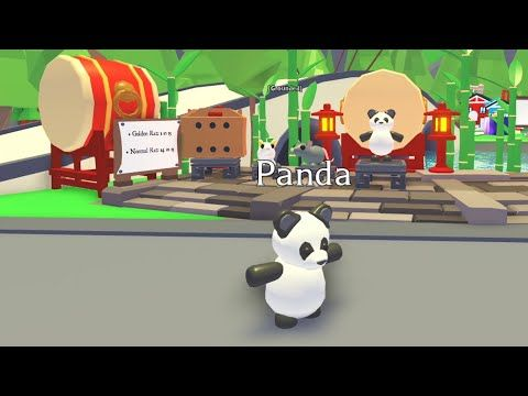 New Pet Panda Doing Kung Fu For 4 Minutes Straight Adopt Me On Roblox Youtube Kung Fu Happy Lunar New Year Panda