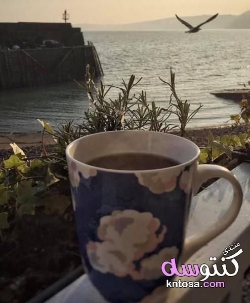 عشاق القهوة Coffee Lover Coffee Time Coffee Is Life