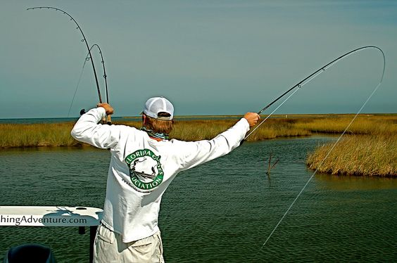 New orleans fishing and fly rods on pinterest for Fly fishing new orleans