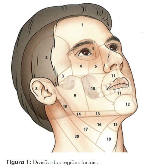 Revista de Cirurgia e Traumatologia Buco-maxilo-facial - Lesão de tecido mole em pacientes vítimas de trauma buco-maxilo-facial