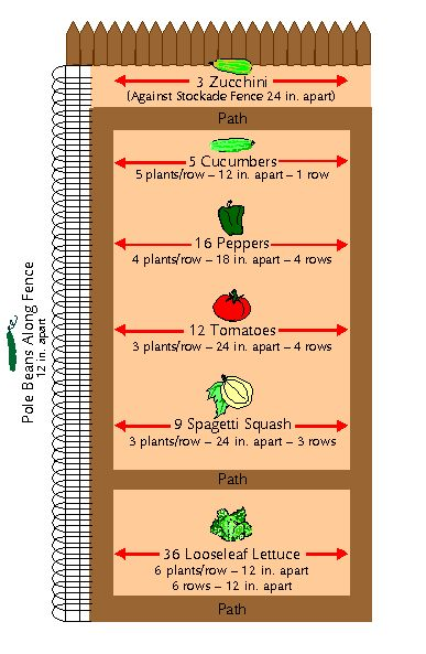 Small vegetable garden plan pocket vegetable garden for Garden space planner