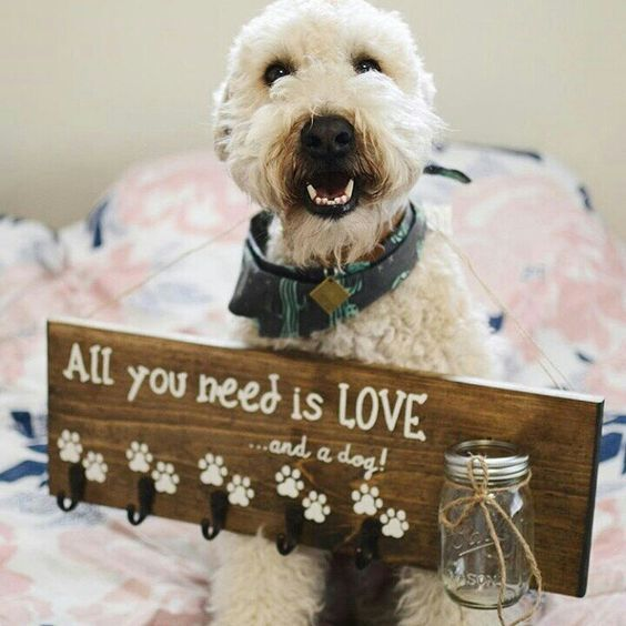 10 Gift Ideas For Dog Lovers 2018 Dog Lovers Dog Gifts Dog