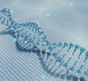 ¿Por qué queremos conocer nuestro propio genoma? http://revistageneticamedica.com/2015/06/18/por-que-queremos-conocer-nuestro-genoma/…  @mgenomica #Genética #Genómica #Biomedicina