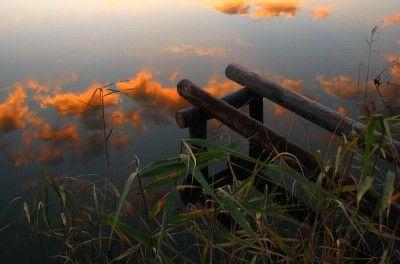 Marek Jedzer фото, летние фотографии природы