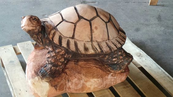 Sculpture turtles and projects on pinterest