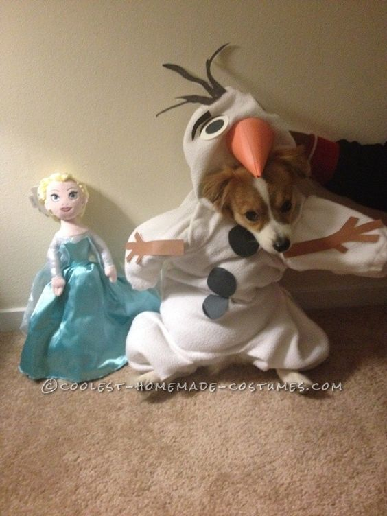 Funny Dog Costume Mochi As Olaf From Frozen Coolest Halloween