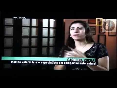 "Tabu Brasil - ""Meu pet, meu filho"" - PARTE 2/3 - Med.Vet.Carolina Rocha"