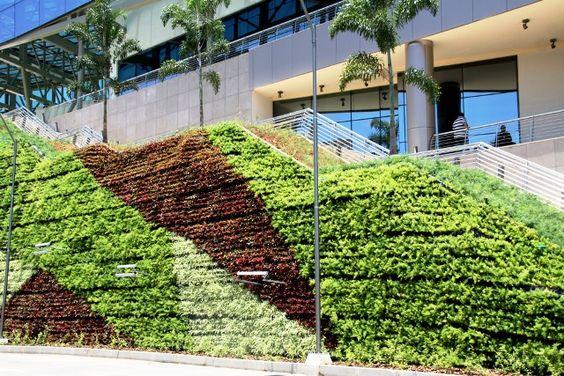 Esse eu vi de perto, sistema Garden Up 16 metros de altura, aproximadamente 2.700 metros quadrados de paisagismo vertical.  Shopping Metropolitano - Barra RJ