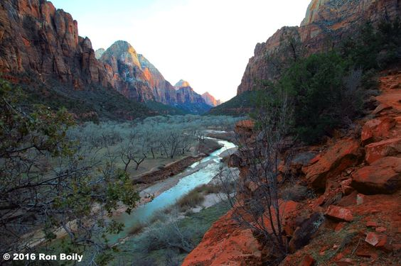 Zion Canyon (desert mountains ). Photo by pincollector1