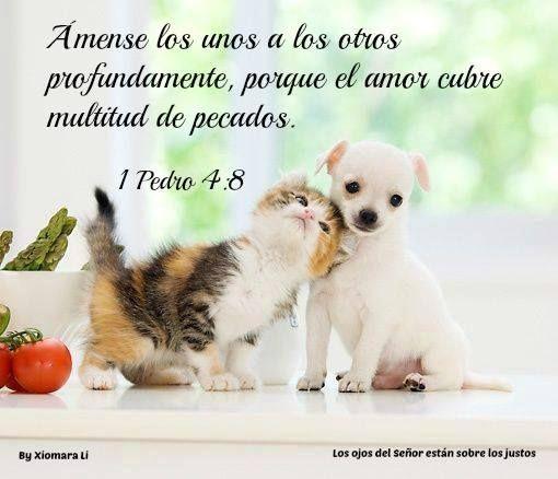 Los ojos del Señor están sobre los justos...1 Pedro 4:8