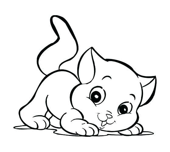 Significado De Gato Para Colorear Animado Buscar Con