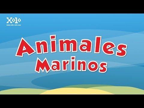 Animales marinos para niños - YouTube
