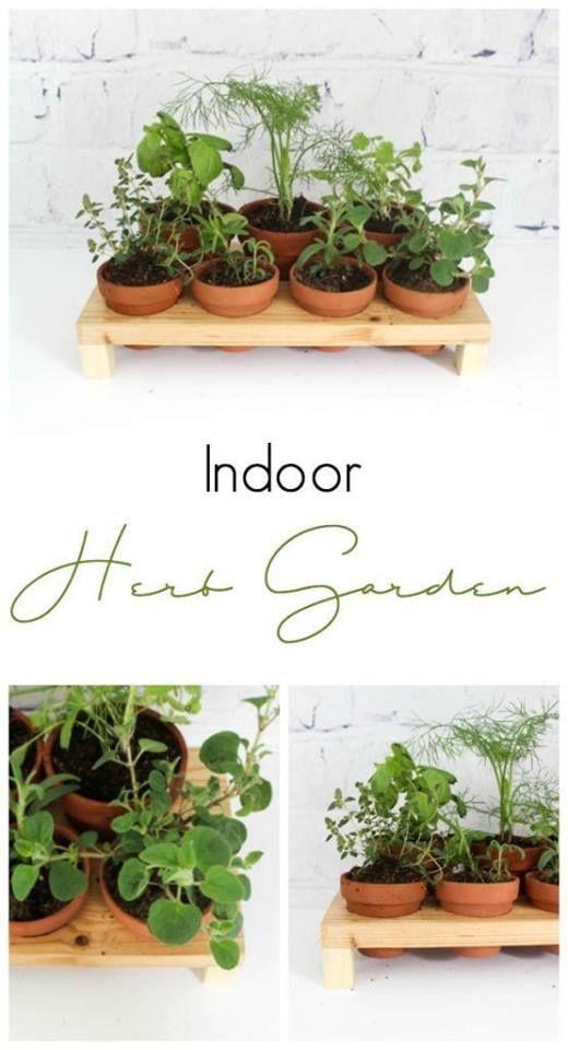 5 Inspiring Indoor Herb Gardens Indoor Herb Garden Herbs