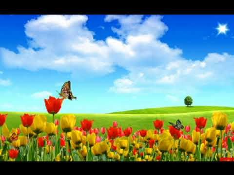 Husno Ishq Ka Sangam Der Tak Nahi Rehta Scenery Wallpaper Desktop Wallpaper Summer Hd Nature Wallpapers