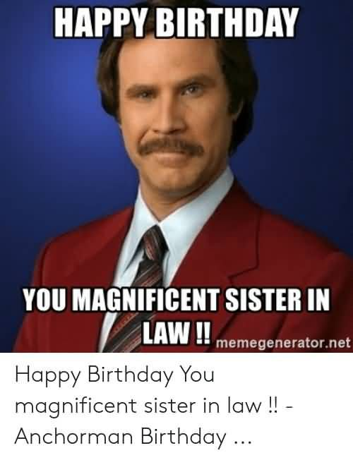 20 Funny Happy Birthday Sister In Law Meme Photos in 2020 | Funny happy  birthday messages, Happy birthday funny, Funny birthday meme