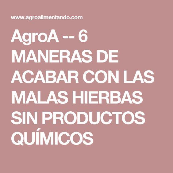 AgroA -- 6 MANERAS DE ACABAR CON LAS MALAS HIERBAS SIN PRODUCTOS QUÍMICOS