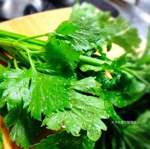 #celery #kitchen garden #vegetables セロリの葉っぱは干しエビと炒めると最高! 今日も元気に楽しく♪