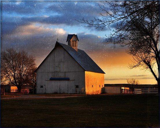 Sunset's beautiful light on side of barn...