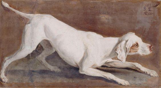 Desportes Etude de chienne blanche Tane 2000x1000
