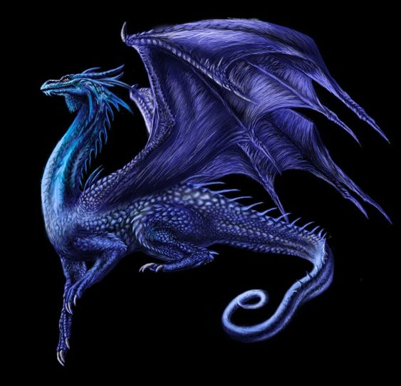 dragons | saphira - Dragons Photo (33304293) - Fanpop fanclubs