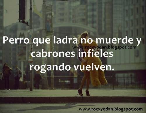 Imagen vía We Heart It https://weheartit.com/entry/88941377/via/27832470 #love #perro #♥ #infieles #nomuerde #queladra #ycabrones #rogandovuelven