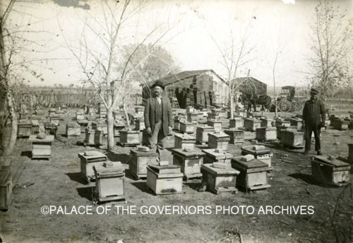 Ca 1920, Beekeepers with Hives, Clovis NM  ...thanks, Lauren!