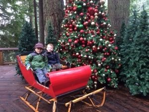 Family Friendly Christmas Activities In Vancouver An Emerald City Life In 2020 Christmas Activities Vancouver Vancouver Bc Canada