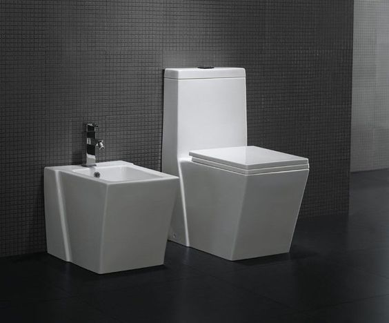 AG   possible toilet option. One Piece Toilet   Modern Bathroom Toilet   Dual Flush Toilet